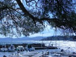 Petit port très tranquille